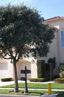 23 Fiore, Newport Coast, CA, 92657