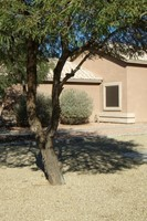 17805 N White Horse Trail, Surprise, AZ, 85374