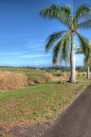Pepeekeo Point Subdivision Lot :15 Pepeekeo, Pepeekeo Point, HI, 96783