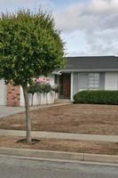 3031 Mattos Avenue, San Jose, CA, 95132